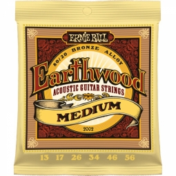 Ernie Ball 2002 Earthwood 80/20 Bronze Medium